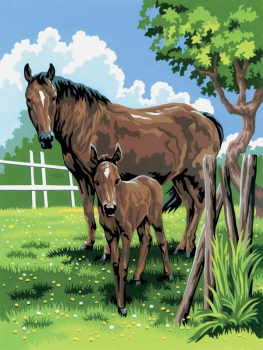 Painting By Numbers - Mare & Foal (Junior Small)