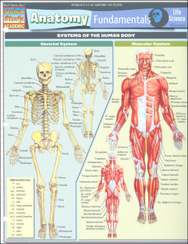 Anatomy Fundamentals Life Science Quick Study