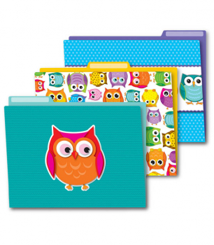 Colorful Owls File Folders (set of 6)