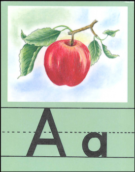 Small Alphabet Set (Illustrated Alphabet Cards)