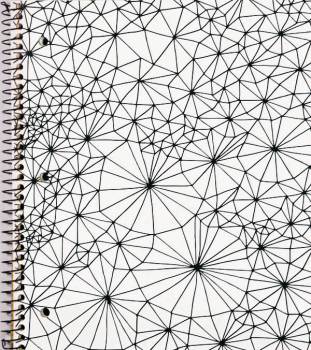 Creation Series 3-Section Notebook: Web Ink Doodle
