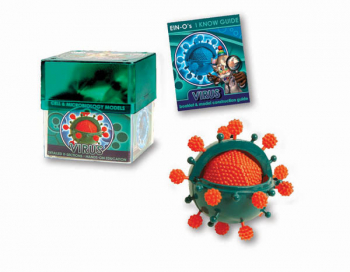 Virus (Cell & Microbiology Model)