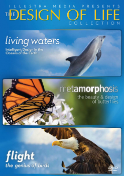 Design of Life Collection DVD (Living Waters/Metamorphosis/Flight)