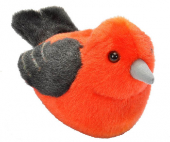 Audubon Bird: Scarlet Tanager With Real Bird Call