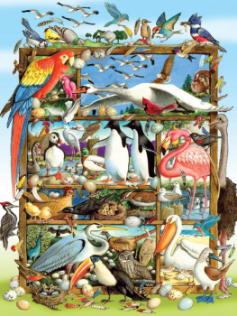 Birds of the World Puzzle (350 piece)