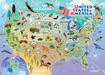 USA Map Tray Puzzle (35 piece)