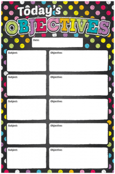 Write & Wipe Magnetic Chart - Neon Chalk Today's Objectives