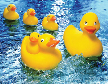 Rubber Duckies Puzzle (60 pieces)