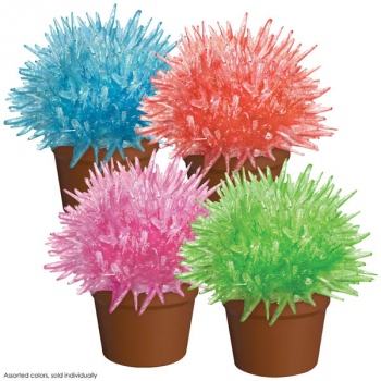 Crystal Cactus (assorted color)