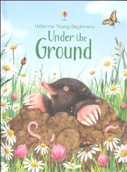 Under the Ground (Usborne Young Beginners)
