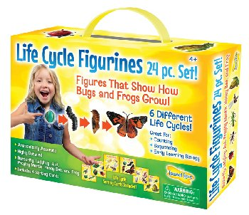 Life Cycle Figurines (24 Piece Set)