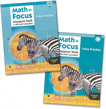 Math in Focus Gr 5 Extra Practice A & B Set