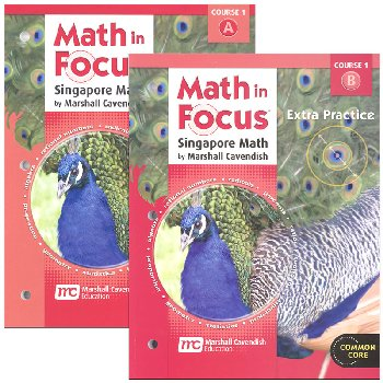 Math in Focus Course 1 G6 Extra Practice A&B