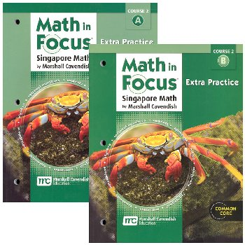 Math in Focus Course 2 G7 Extra Practice A&B