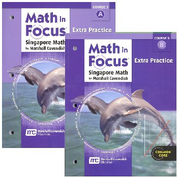Math in Focus Course 3 G8 Extra Practice A&B