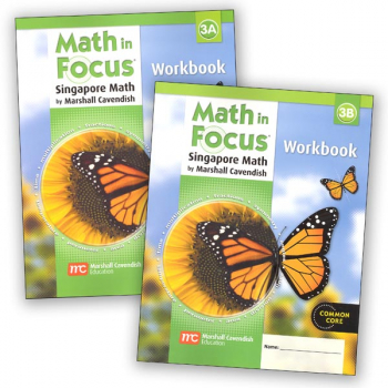Math in Focus Grade 3 Workbook A and B Set