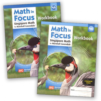 Math in Focus Grade 4 Workbook A and B Set