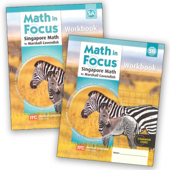 Math in Focus Grade 5 Workbook A and B Set